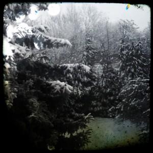 Winter vor meinem Wohnzimmer